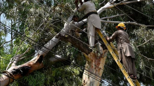 Electrocution in state-owned firms: Nepra directed to submit report
